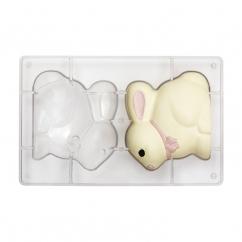 Polykarbonátová forma na zajačika